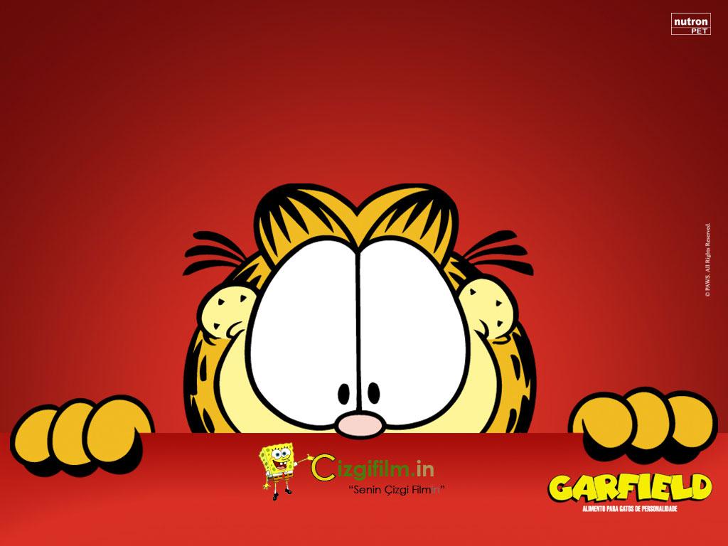 Garfield » Garfield Bakışları - Tam boy görmek için tıklayın