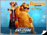 İyi Dostum Köpek - Garfield ve köpek iyi anlaşmışlar fotoğraf çektiriyorlar