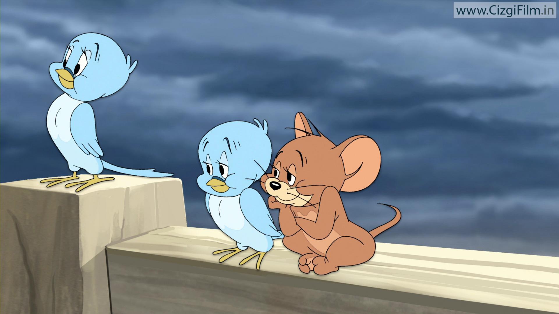 Tom ve Jerry » Jerry ile Kuşlar - Tam boy görmek için tıklayın
