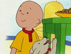 Caillou ve Rover İzle