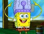 Plankton Ma�aralar�